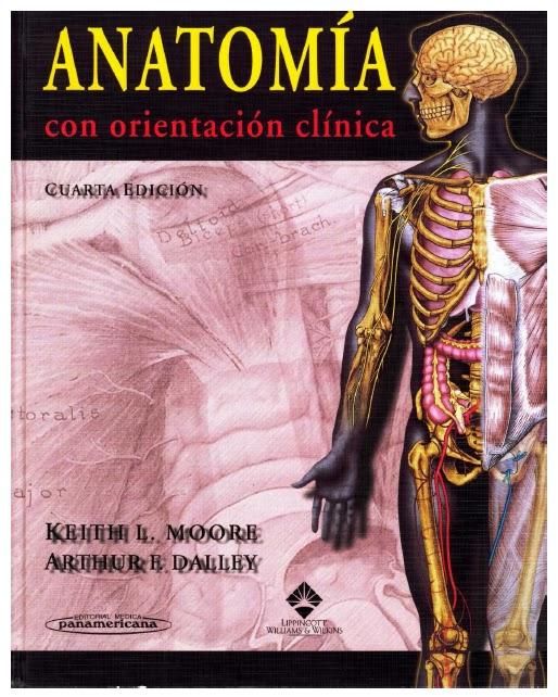 Anatomía para Enfermería UNAJ: Manual: Introducción a la Anatomía ...