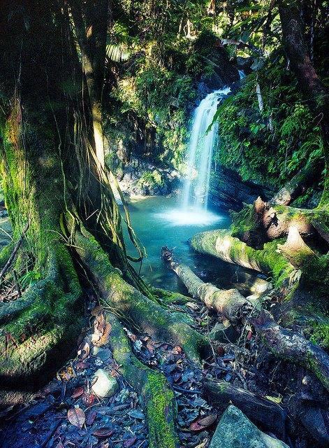 facebook amazing photos waterfall rio grande puerto rico