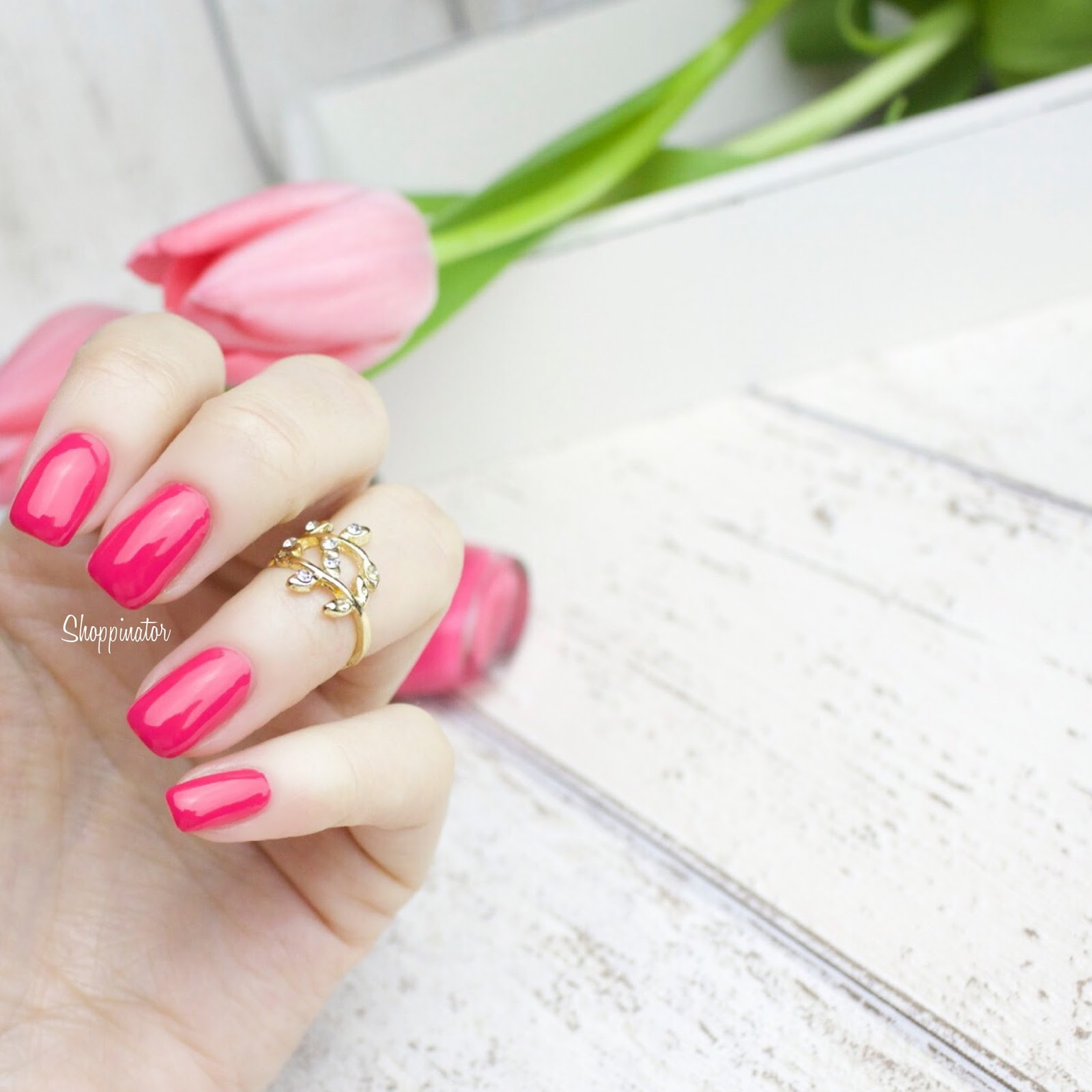 Shoppinator-Astor-Pink-with-envy-Pink-Perfect-Stay-Gel-Shine-Nagellack-Notd-Nails-Frühlingslack-Frühling-Drogerie-Miss-Sophies-Flamingo-Nail-Sticker-Nailsticker-Flamingos-Nailwraps