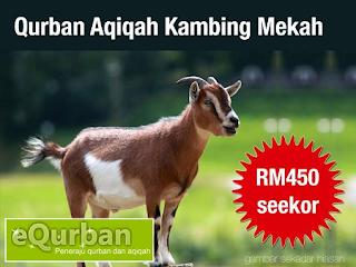 Qurban Aqiqah Kambing Mekah