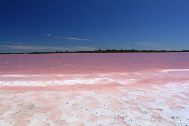 البحيرة الوردية في السنغال Lake Retba