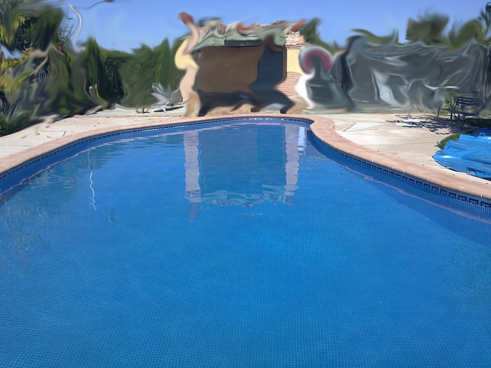 Mantenimientos pastor piscina en forma de ri on for Formas para piscinas