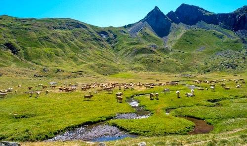 Maestra de primaria el paisaje paisajes de monta a - Casas montornes del valles ...