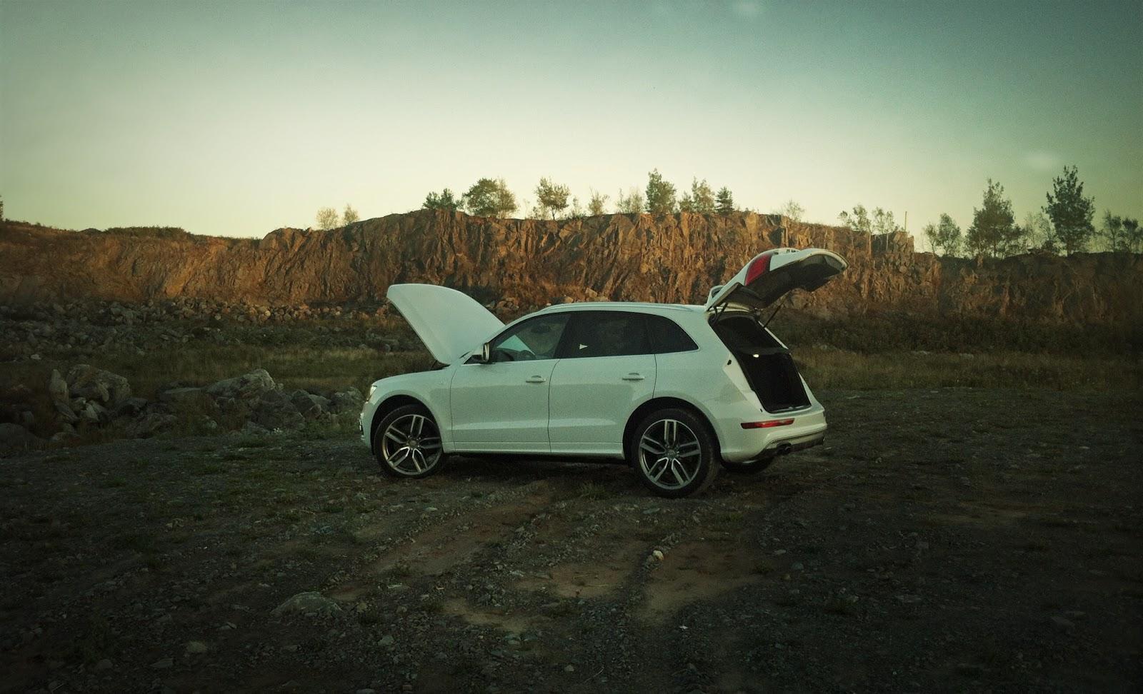 2014 Audi SQ5 Technik