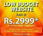 Get website just for Rs.2999/-