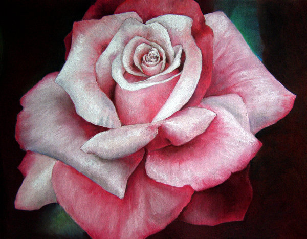 Creative Arts: Flowers In Oil Pastels