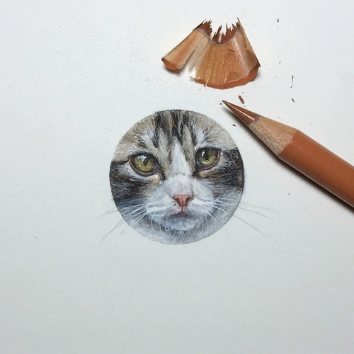 07-Kitten-Karen-Libecap-Star-Wars-&-other-Miniature-Paintings-and-drawings-www-designstack-co
