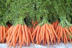 zanahoria beta caroteno