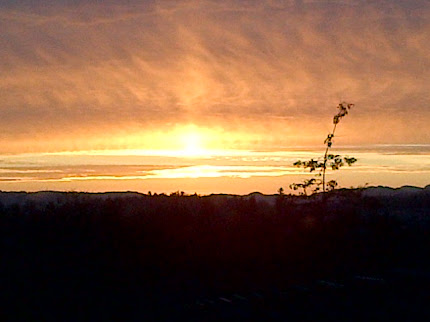 A Rogers Sunset on February 2, 2012