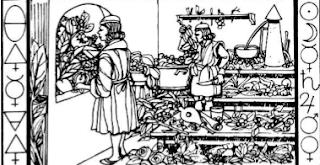 Ilustração do Livro Botânica Oculta de Paracelso