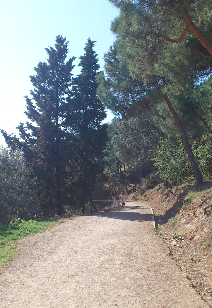 paseando-por-el-parc-del-guinardo-hansel-y-greta