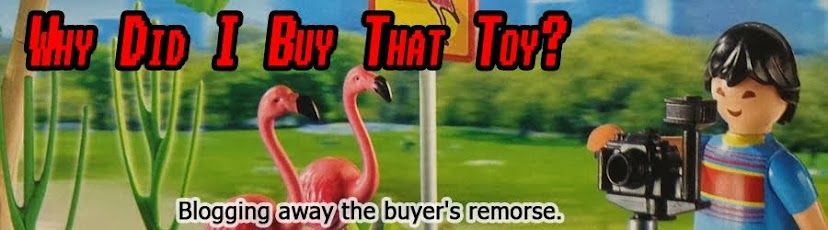 Why Did I Buy That Toy?