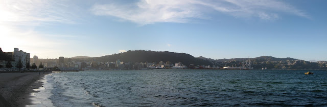 panoramic view of Wellington city from Oriental Bay