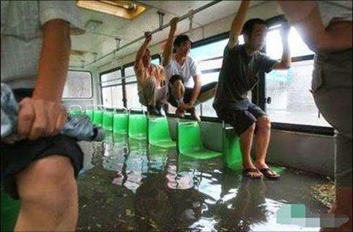 hài hước xe bus