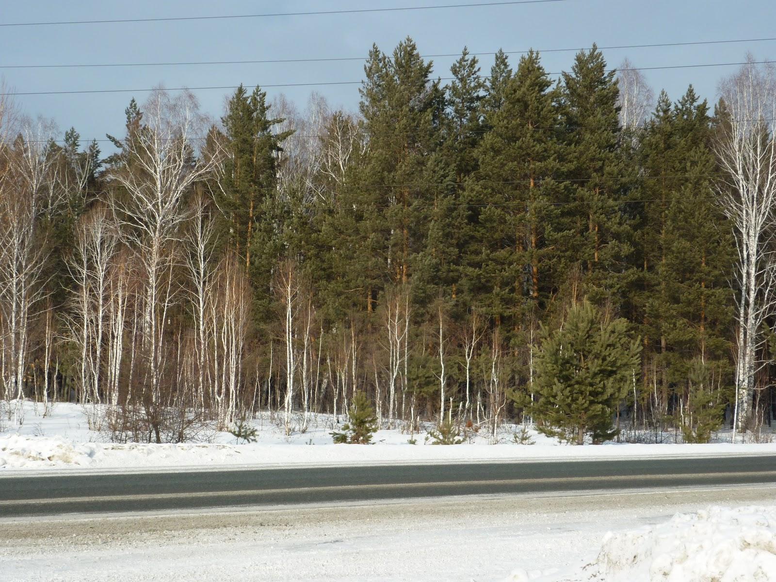 Погода славянка хасанский район на 3 дня