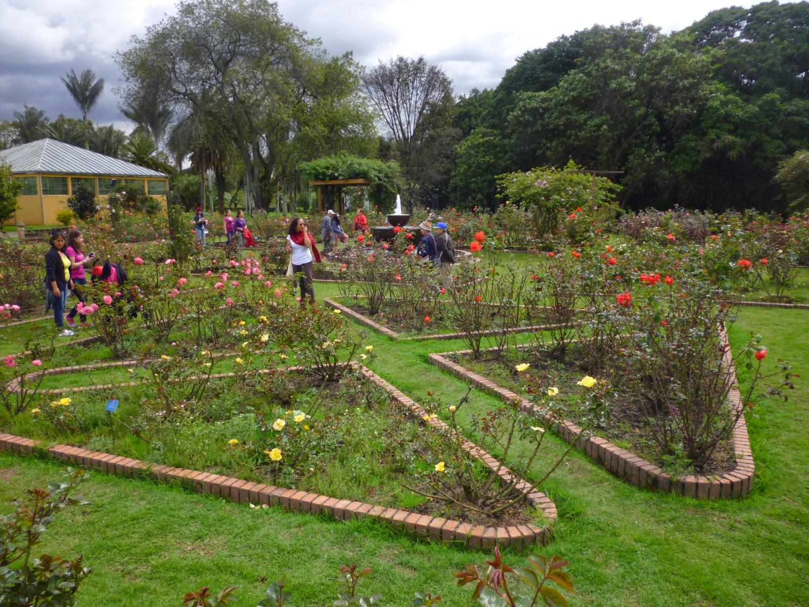 Fundacionideagenial el jardin bot nico de bogot es un for Arboles del jardin botanico