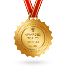 Top 75 Blogs Award.
