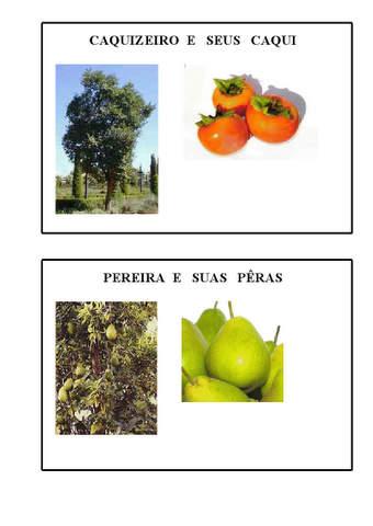 frutos do outono