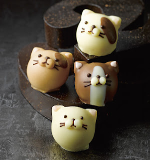 Cat chocolates by Goncharoff