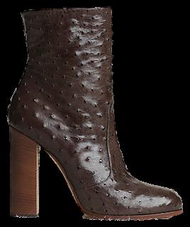 Celine FW13 boots