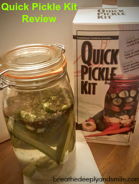 quick-pickle-kit-review
