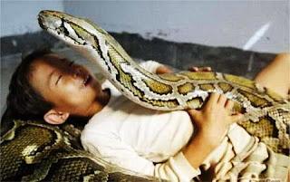 criança e anaconda (2)