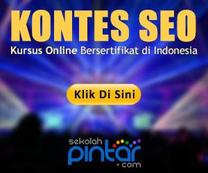 Kontes SEO Kursus Online