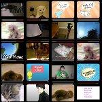 ちょっと凄い…総合動画検索ブログパーツ