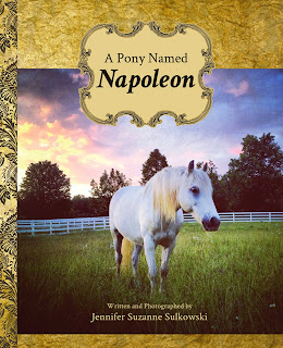 A Pony Named Napoleon, by Jennifer Sulkowski