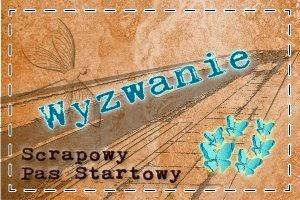 http://scrapowypasstartowy.blogspot.com/p/zasady-wyzwan.html