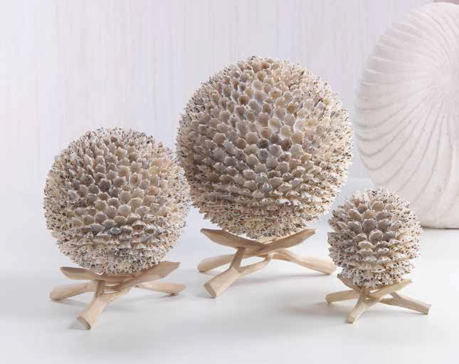beach-decor-shell-ball-sand-driftwood-st