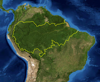 Amazon rain forest map from