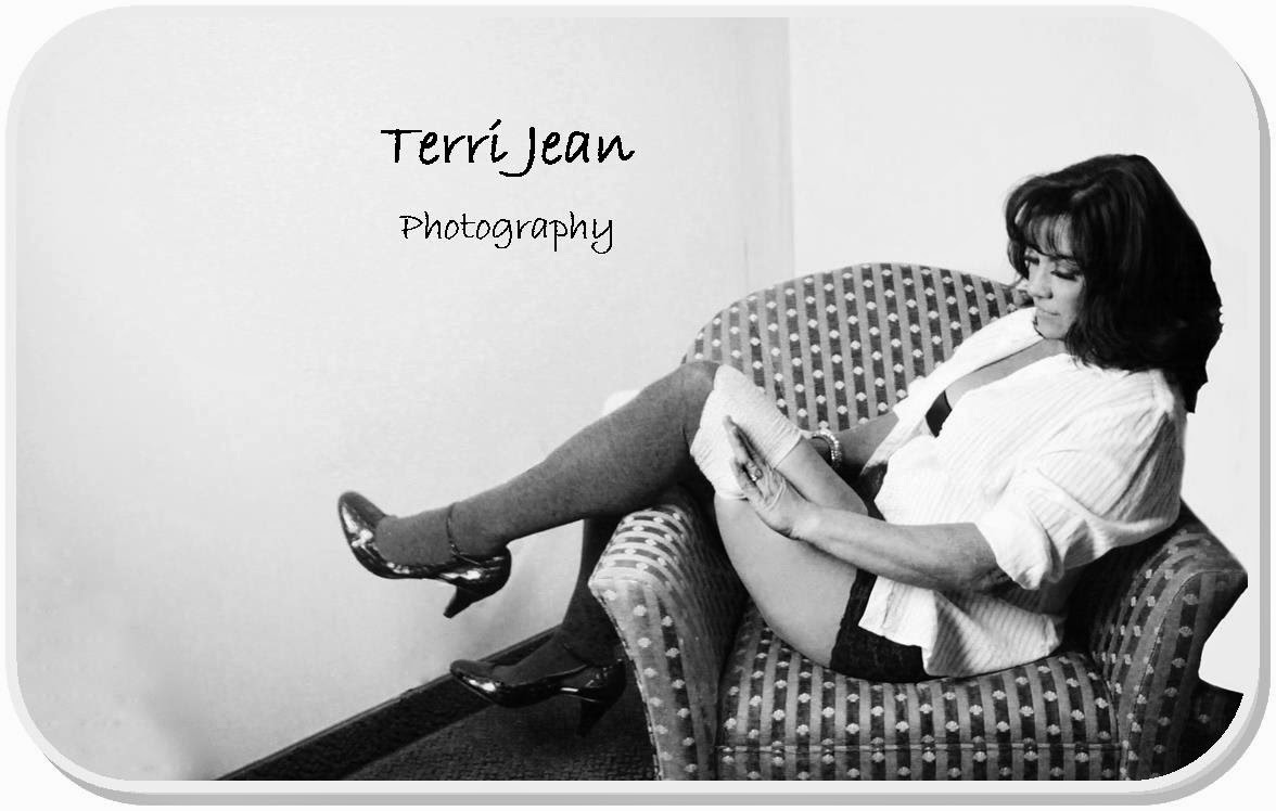 terri jean, terri jean photography, athens ohio, terrijean.com, i feel delicious, boudoir, pinup, ohio photographer, tjp, women photographers, illustrated life, change of life, life list, glouster ohio