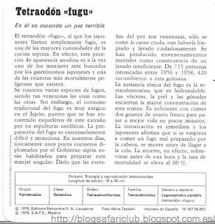 Fichas Safari Club, características del Tetraodón fugu