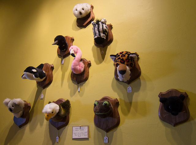 ultra gross mounted stuffed animal heads. Black Bedroom Furniture Sets. Home Design Ideas