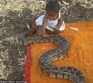 BLOG: PHOTOS: Parent Gives Six-Month-Old Girl A Snake To Play With Because They Are Too Poor To Buy Her Toys