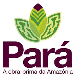 Logomarca Pará!