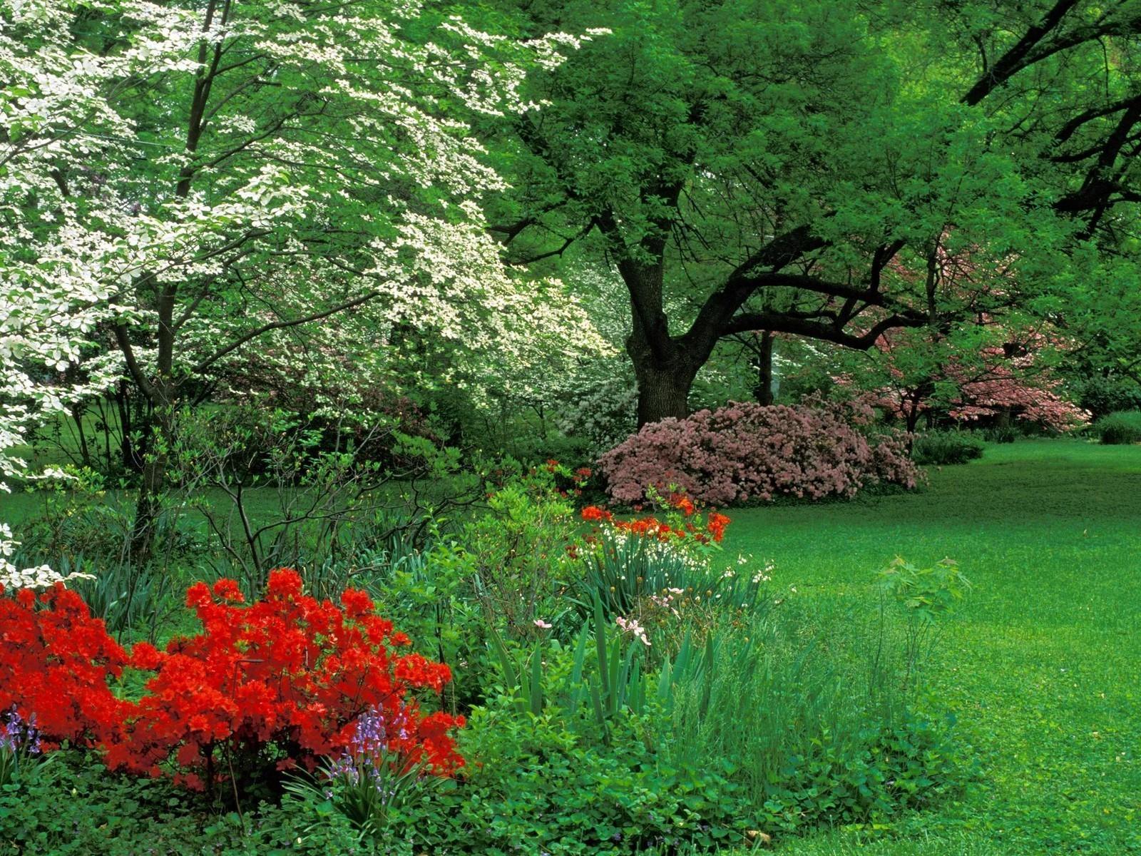 Plus imagen gratis primavera fondos hd for Jardines de primavera