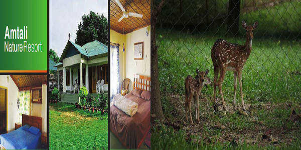 Habiganj Amtali Nature Resort Address and Contact