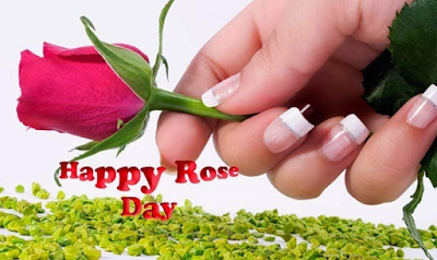 Happy-Rose-Day-2016-Pictures-for-Facebook-and-Whatsapp