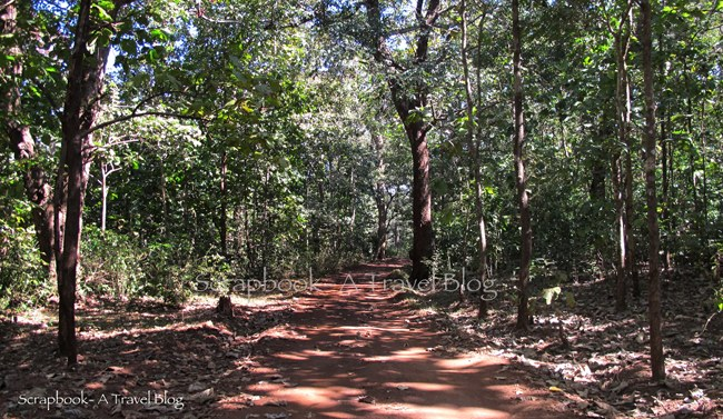 Dandeli Wildlife Sanctuary