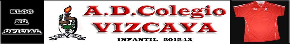 CD Colegio Vizcaya