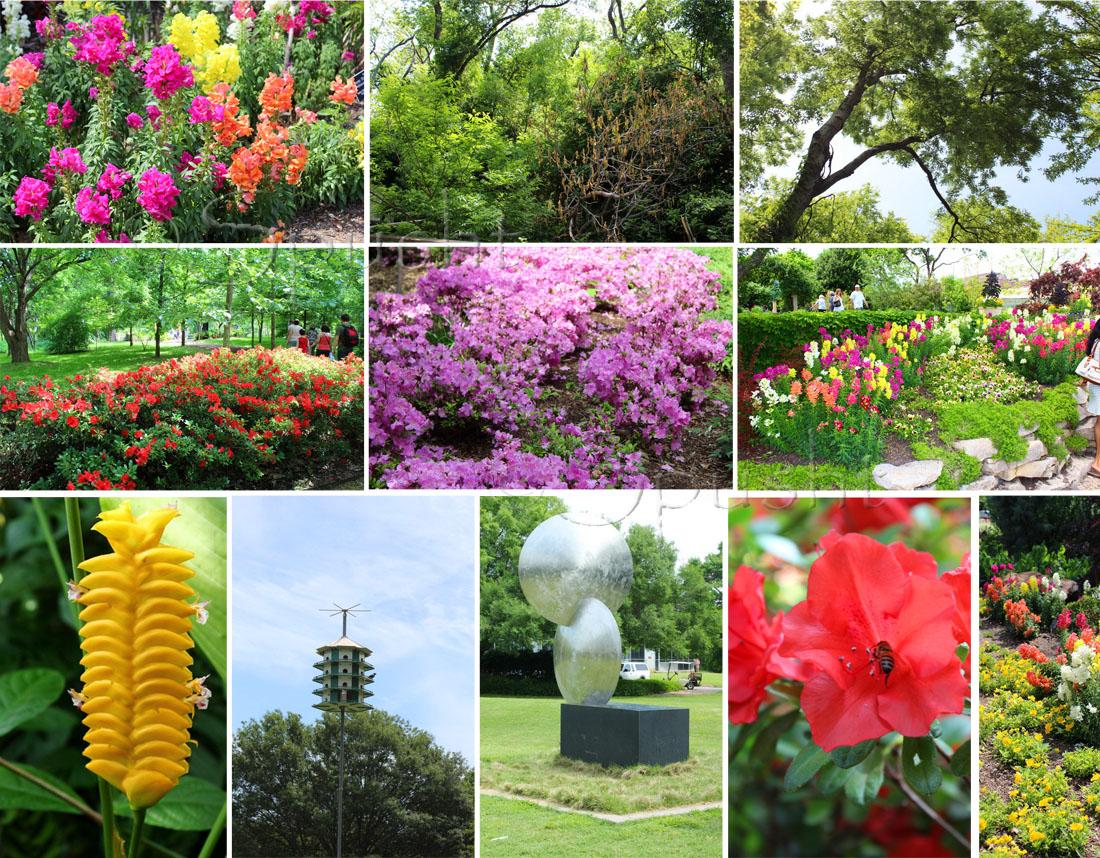 Weddings fort worth botanic garden for Botanical garden designs