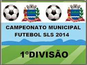 1º Divisão Futebol