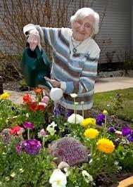 Harvest Of Hope Community Garden Hoh To Host Senior Garden Tours
