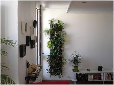 Decoracion actual de moda decorar con plantas - Decoracion actual de moda ...