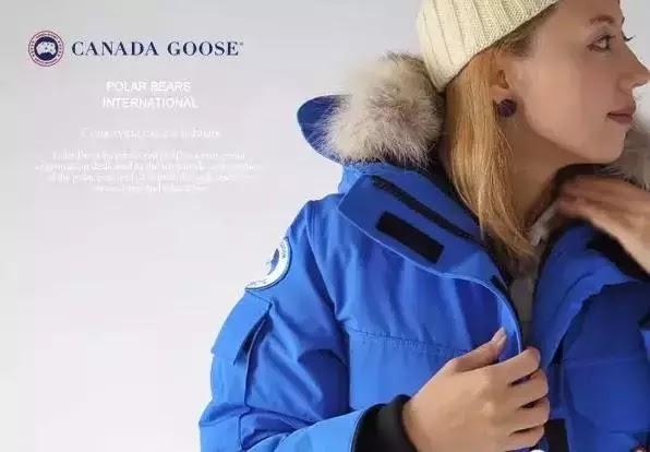 polaire canada goose
