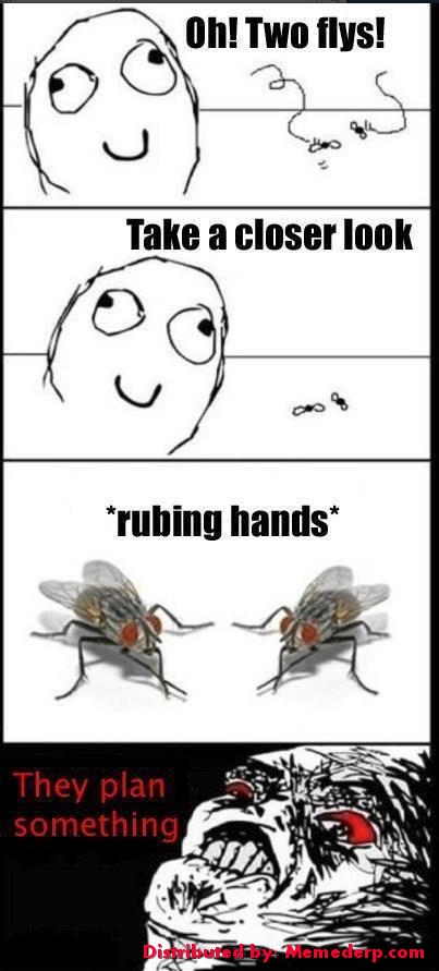 Meme Derp Flies Planning and Rubbing hands