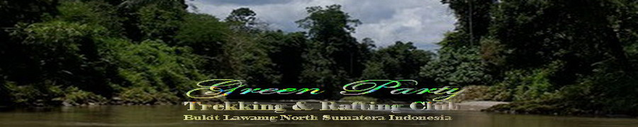 Green Party 67( TOUR AND TREKKING ) Bukit Lawang