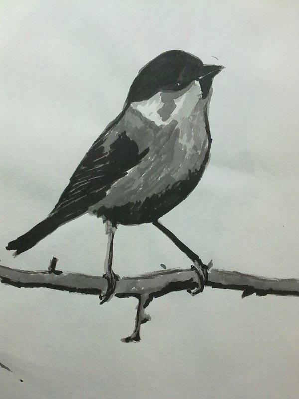 dibujo de pajaro con tinta china